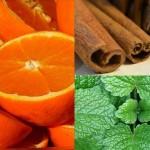 orange-vanille-menthe