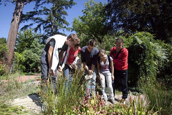 jardin-botanique2