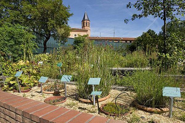 Le jardin botaniqueespace p dagogique museum de toulouse - Les jardins du museum toulouse ...